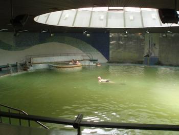 Бассейн отеля Меркур