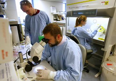 Лаборатория клиники